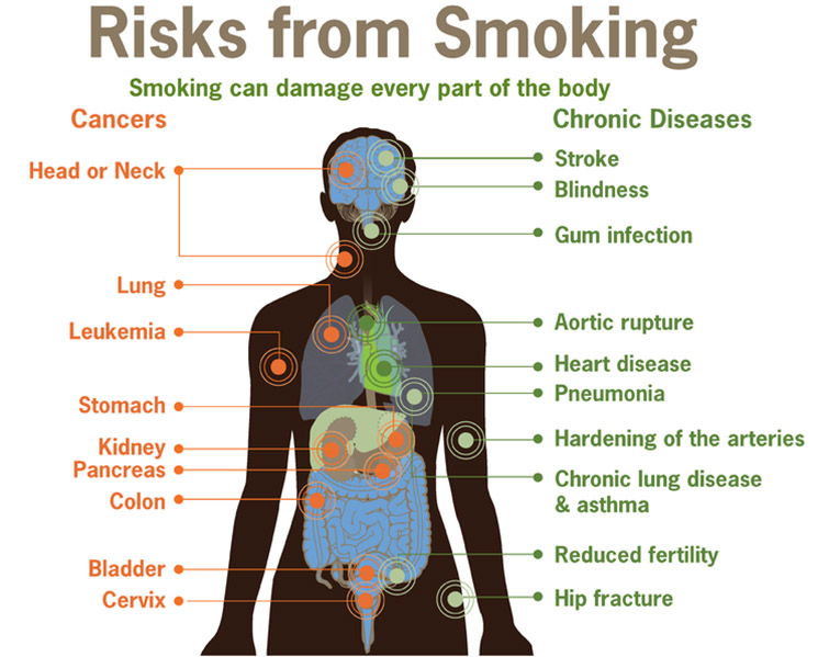 Cigarette contains of hazardous substance
