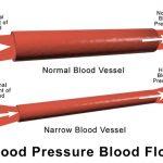blood pressure blood flow