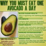 avocado benefit