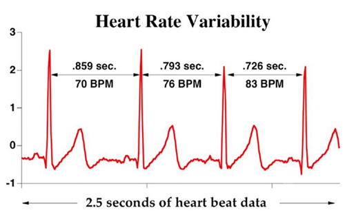 list of heartbeat that is occurred based on body condition