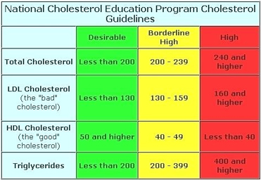 bad and good cholesterol